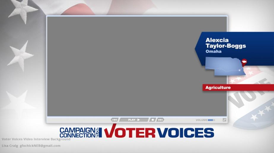 Original Voter Voices concept by Lisa Craig